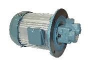 HBPG-KE4L-TPC3-*R TOYOOKI HBPG Gear pump