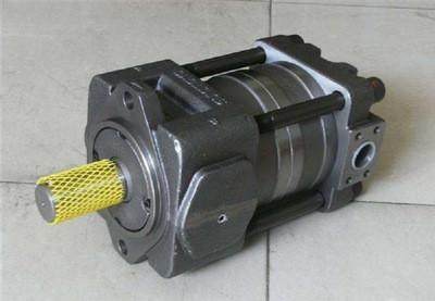 SUMITOMO QT6253 Series Double Gear Pump QT6253-80-50F